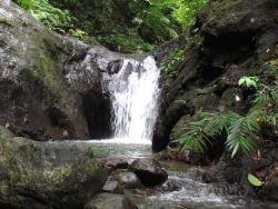 AnyConv.com  Cawayan-Falls-4