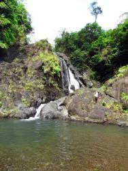 Kinanliman-Kaliwa